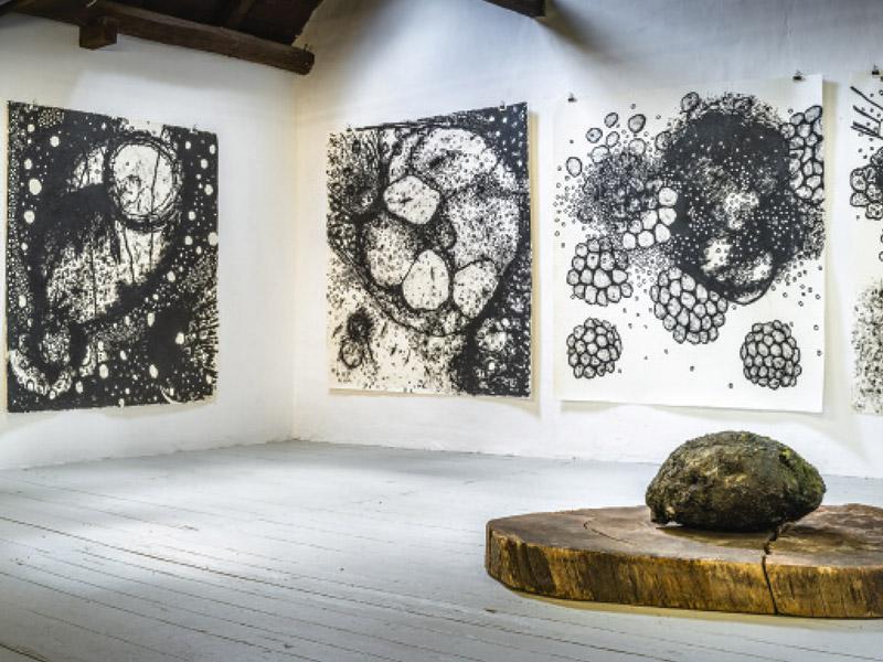 Ausstellung Josef Wolf 2018